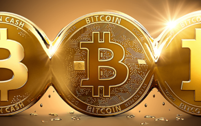 Bitcoin Futures Announcement rises price to All-time High