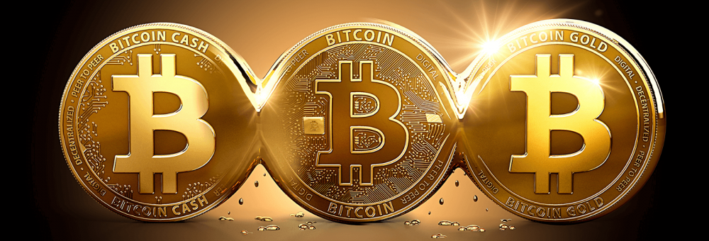Bitcoin Eases From Record High, Bitcoin Gold Surges 17%